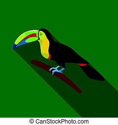 Mexican keel-billed toucan icon in flat style isolated on ...