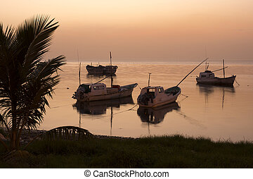 Five Mexican panga fishing boats sit quietly moored near shore in the calm water of the Gulf of Mexico at the day's end.