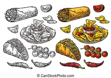 Mexican traditional food set burrito, tacos, chili, tomato, nachos. Engraving