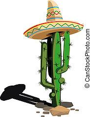 mexicano, cacto, chapéu