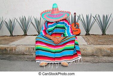 mexicano, perezoso, hombre, sentarse, serape, agave,...