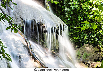 mexico., 滝, ジャングル