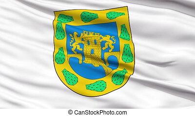 Mexico City Close Up Waving Flag
