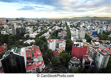 Mexico City View