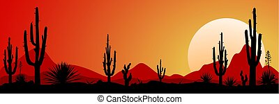 Mexico desert sunset 1 - Sunset in the Mexican desert....