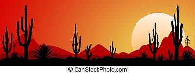 Mexico desert sunset 1 - Sunset in the Mexican desert....