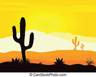 Yellow desert scene with cactus plants, weeds and mountains. Sunset in mexico desert.