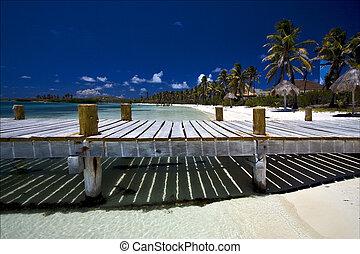 mexico isla  contoy