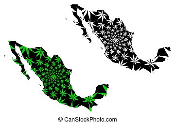 Mexico - map is designed cannabis leaf