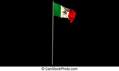 Mexico national flag waving on flagpole on black background