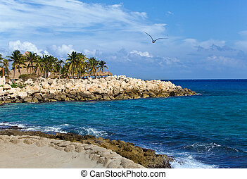 Mexico, park of Shkaret. Rock with palm trees on Oceanside