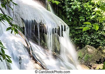 mexico., vízesés, dzsungel