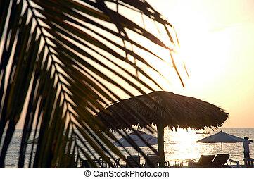 mexique, plage, pendant, puerto, escondido, coucher soleil
