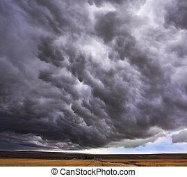 mező, óriási, megrohamoz, felül, felhő