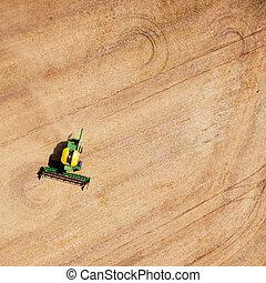 mező, betakarít, példa