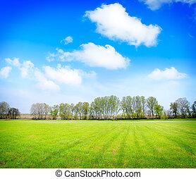 mező, blue, ég