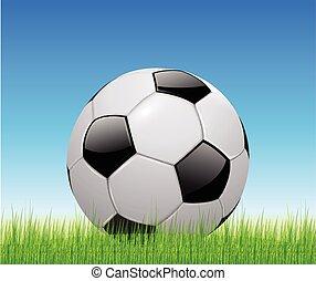 mező, futball, zöld labda