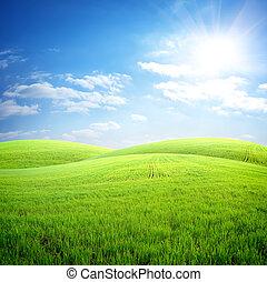 mező, közül, friss, fű