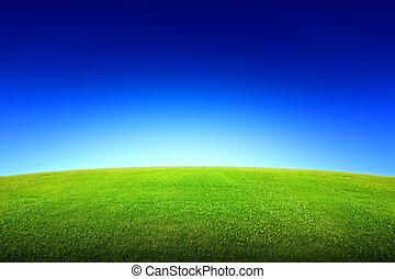 mező, közül, zöld fű, és, ég