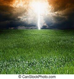 mező, megrohamoz, zöld