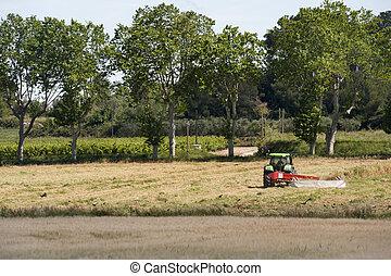 mezőgazdaság, francia, táj