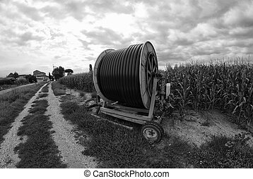 mezőgazdaság, gépezet, olaszország