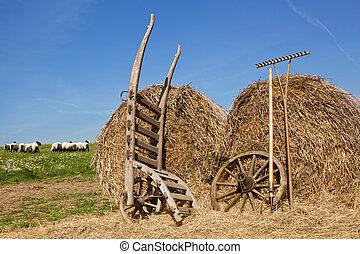 mezőgazdaság, háttér.
