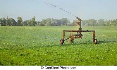 mezőgazdaság, locsolás, megfog, víz, öntözés
