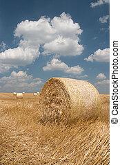 mezőgazdaság, -, szénaboglya