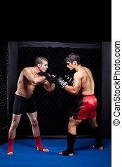 mezclado, artistas marciales, antes, un, pelea
