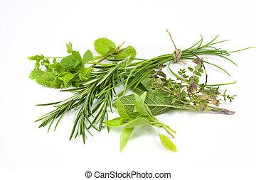mezclado, hierbas frescas
