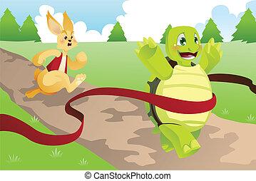mezei nyúl, teknősbéka