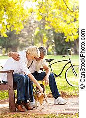 mezzo, età, coppia, gioco, con, coccolare, cane
