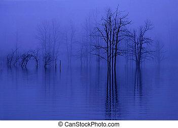 mgła, drzewa