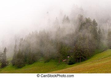 mgła, prospekt, panoramiczny, włoski, góra
