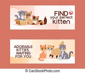 miłość, illustration., afisz, adoptować, kot, banners., wektor, adopcja, pieszczochy, kociątko, przyjaźń, znaleźć