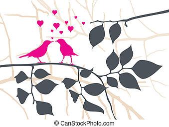 miłość ptaszki, na, niejaki, drzewo, -, wektor