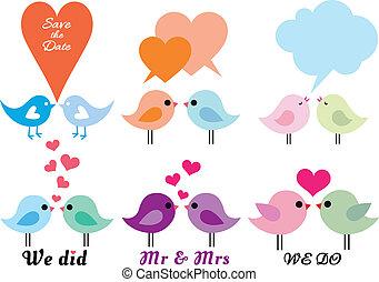 miłość ptaszki, z, serca, wektor, komplet