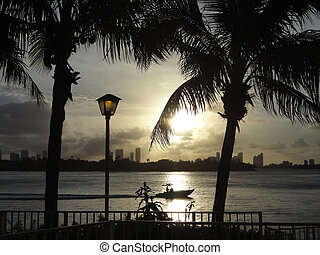Miami backlight view at sunset