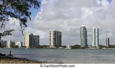 Miami bird hitting water fishing - Florida Miami bird...