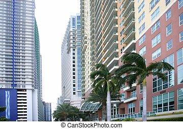 miami, ciudad, edificios, céntrico, colorido