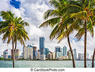 Miami, Florida, USA tropical downtown skyline.