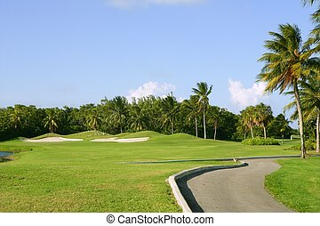Miami Key Biscayne Golf tropical field