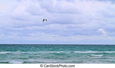 miami, szeles, tengerpart, papírsárkány, napok