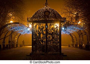 miasto park, w nocy, w, przedimek określony przed rzeczownikami, mgła