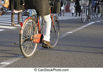 miasto, rower
