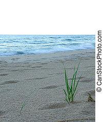 michigan , λίμνη , η π α