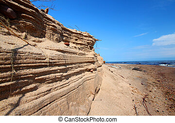 Michigan Beach Landscape