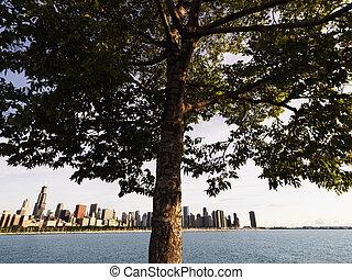 michigan, lac, chicago.
