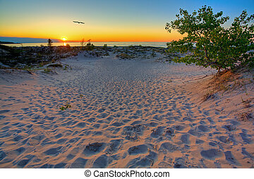 Michigan sunset - Scenic sunset in the dunes of Northern ...